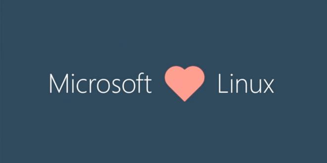 Linux Kernel Windows